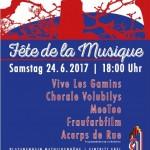 FDLM-2017_Plakat